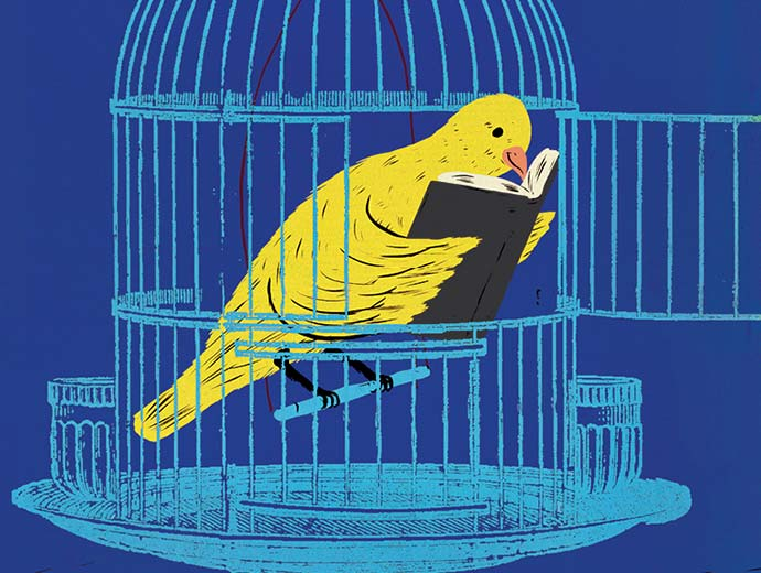 Bridport Arts Centre – illustration of a yellow bird in a open blue cage reading a book