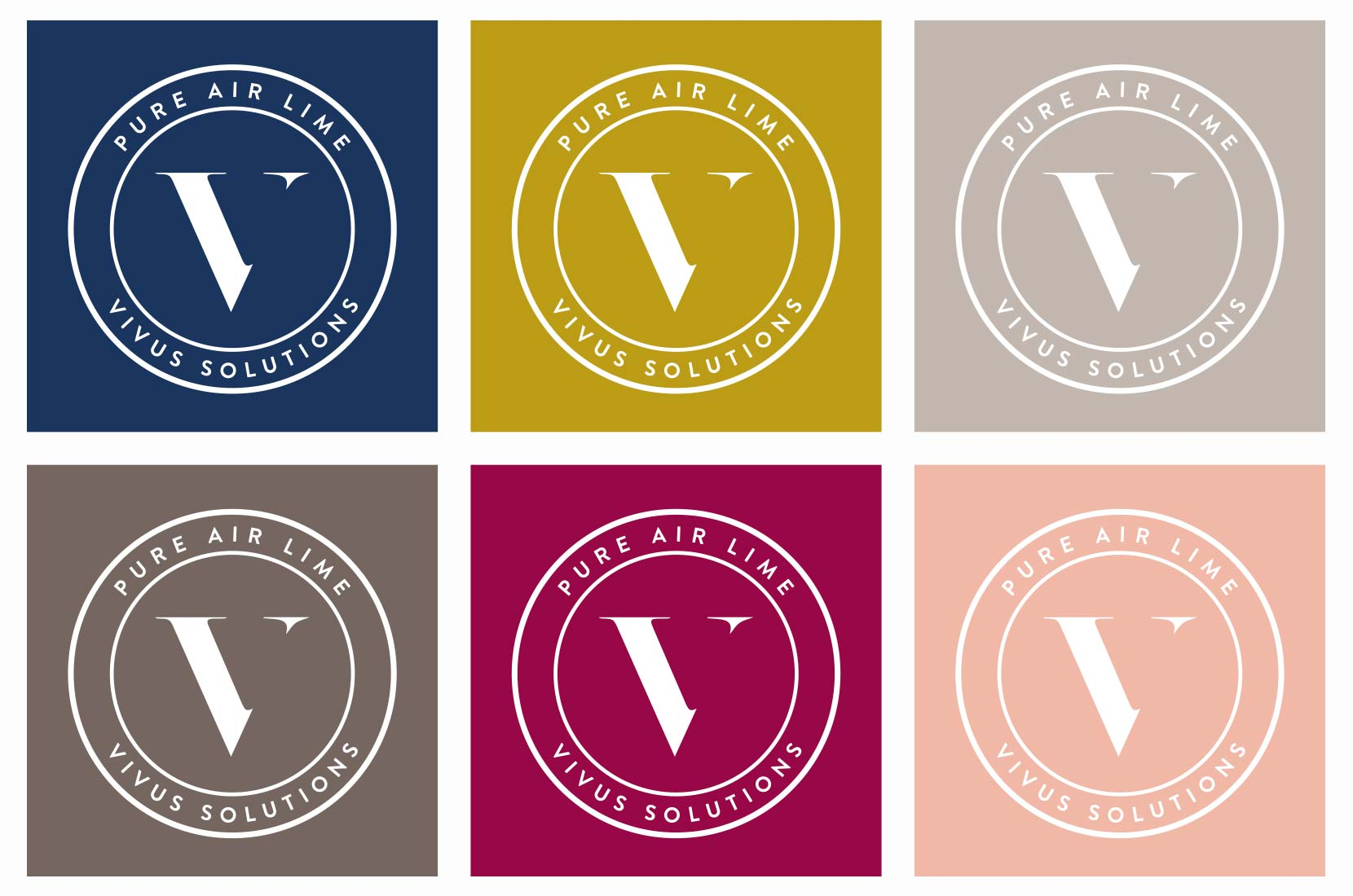 Vivus Solutions Colour Palette